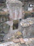 Interior of Colisseum