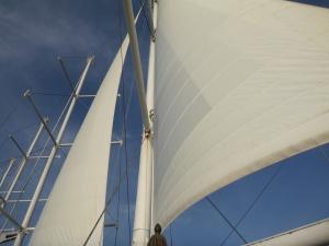 Sails aboard Wind Spirit