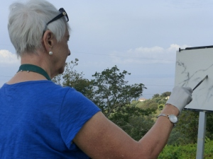 When we arrived, Sharon set up her easel for plein air work in our idyllic spot.